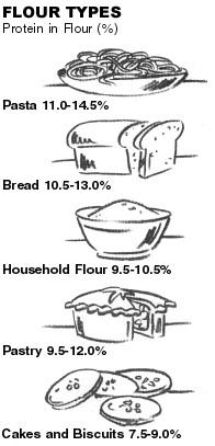 Flour Types and Protein levels